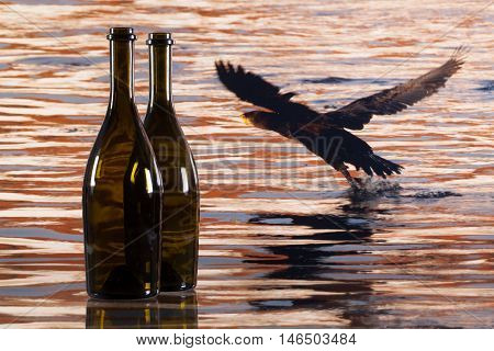 Two bottles from red wine and cormorant flying over the river at sunset