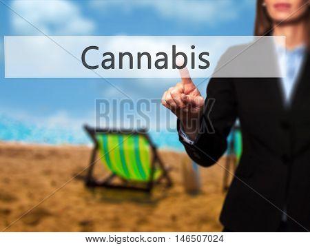 Cannabis - Businesswoman Pressing Modern  Buttons On A Virtual Screen