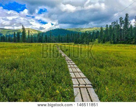 Wooden trekking footpath in national park mountains