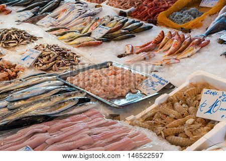 Fresh fish and seafood for sale at the Vucciria market in Palermo, Sicily