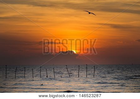 Sunset over seacoast with sunset behind cloud, natural landscape background