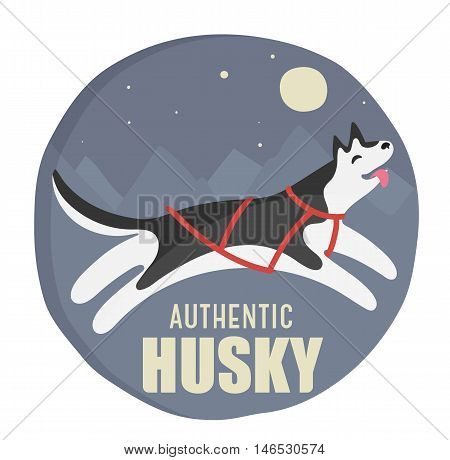 harnessed husky authentic vector hand-drawn cartoon illustration