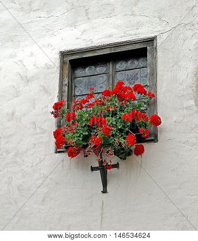 house window old etched glass design and red geraniums