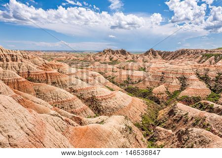 Landscape view of Badlands National Park butte sandstone canyons in desert with green plants