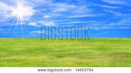 Beautiful Landscape green field in the summer