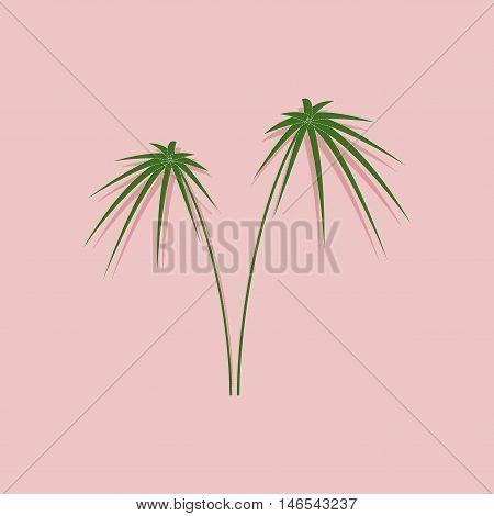 paper sticker on stylish background of plant Cyperus