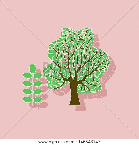 paper sticker on stylish background of plant Acacia
