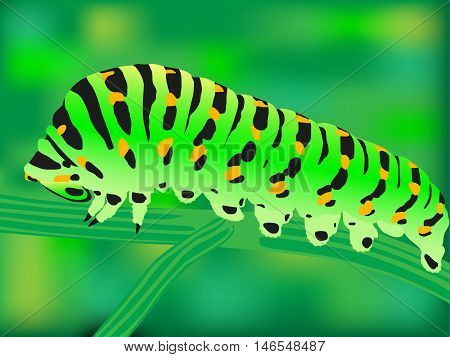 Vector illustration of a green worm sitting on a branch