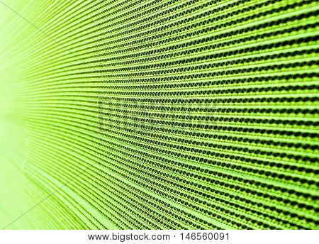 Abstract View of a Green Corrugated Cardboard