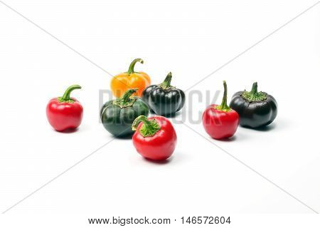 Small bell pepper chili capsicum paprika colorful on white background