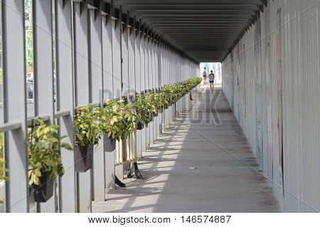 Long Colonnade