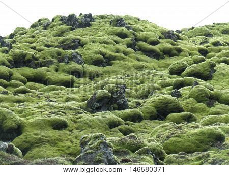 Amazing Green Mossy Lava Field in South Iceland, Background