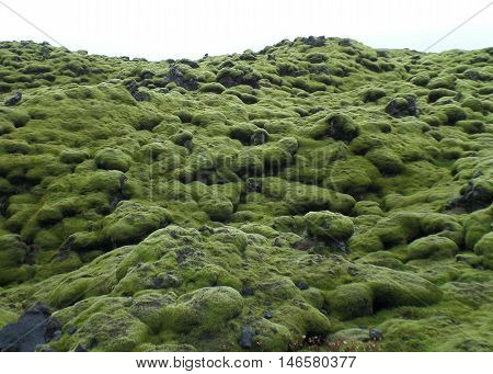 Green Mossy Lava Rocks along the road of South Iceland, Background