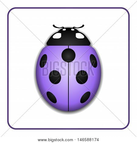 Ladybug small icon. Lilac lady bug sign isolated on white background. 3d volume design. Cute colorful ladybird. Insect cartoon beetle. Symbol of nature spring or summer. Vector illustration
