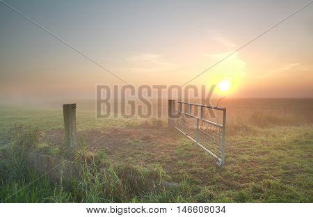 misty sunrise on Dutch farmland Groningen Netherlands