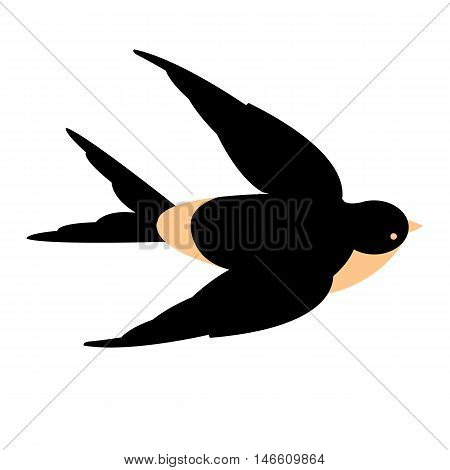 swallow bird vector illustration style Flat flying