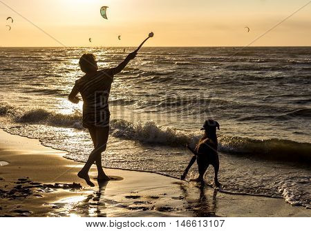 Kijkduin beach the Netherlands - September 08 2016: playing fetch with your dog