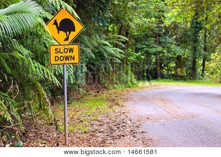 Cassowary Road Warning Sign In Asutralia