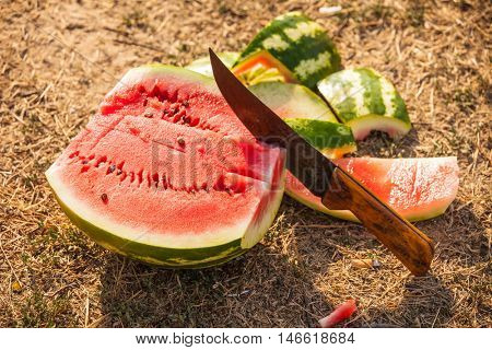 big ripe water melon with slice and knife