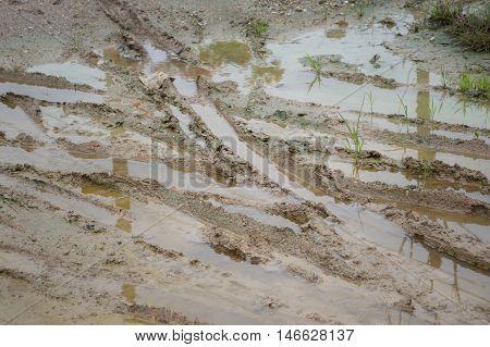 close up wheel tracks on wet soil