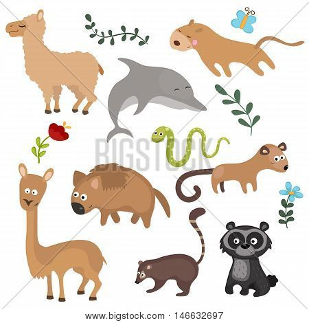 Set of different animals of South America on white background.