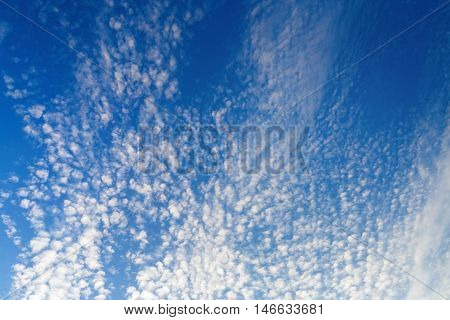 Blue sky with many small fluffy white clouds. Sky with clouds background.