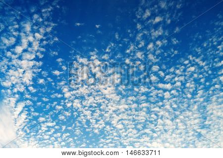 Tiny fluffy clouds in the blue sky. Sky with clouds background.