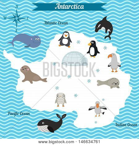 Cartoon map of Antarctica continent with different animals. Colorful cartoon illustration for children and kids. Antarctica mammals and sea life.