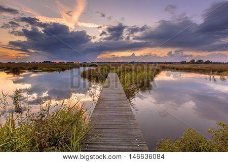 Footbridge In Wetland