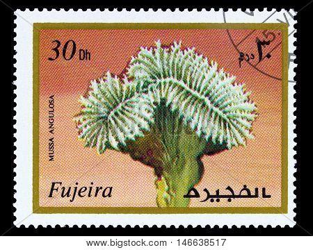 Fujeira - Circa 1972