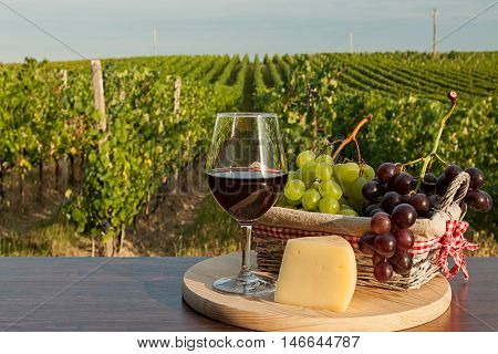 Glass of red wine with grapes in a basket and cheese in front of a vineyard