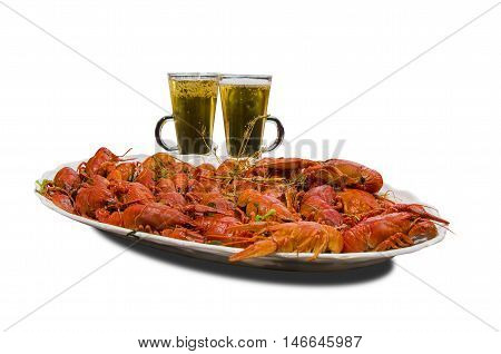 Boiled crawfish and glasses with beer isolated on white