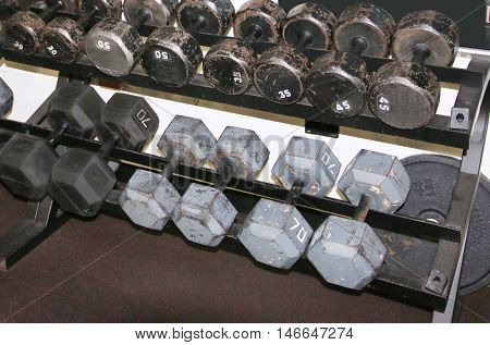 Dumbells on a rack in a weightroom