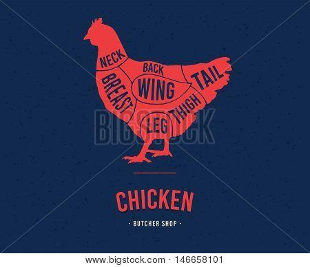 Chicken cuts. Diagrams for butcher shop. Scheme of chicken. Vector illustration.
