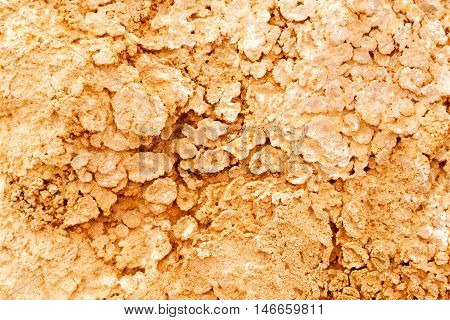 In Oman   Rub  Al Khali Old Desert And The Abstract Cracked Sand  Texture