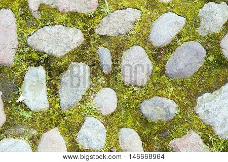 Texture of stones in the grass. Paving stones territory. Landscaping