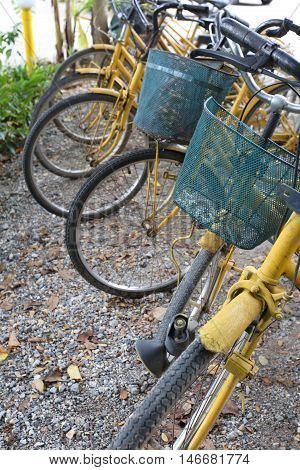 Old yellow bicycle parked in the public park.