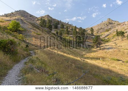 A hiking trail to the top of a butte.