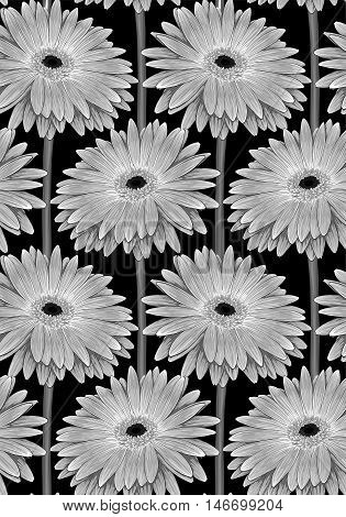 Beautiful monochrome black and white seamless background with gerbera flower with a stem. Hand-drawn contour lines and strokes with effect of drawing in watercolor