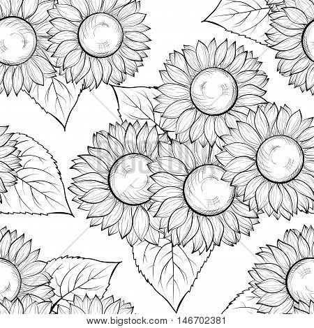 beautiful monochrome black and white seamless background with sunflowers. Hand-drawn contour lines and strokes. Perfect for background greeting cards and invitations