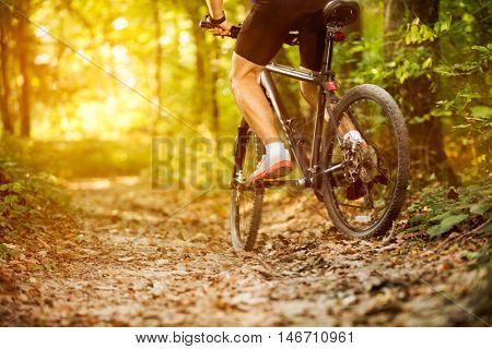 cyclist man riding mountain bike in forest horizontal view of healthy lifestyle