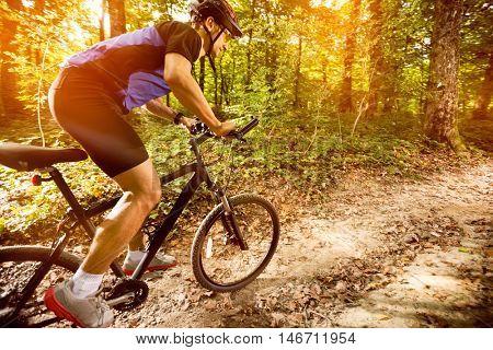 Mountain biker riding a trail in a mountain bike park