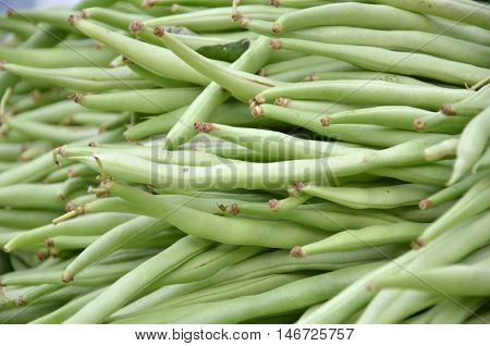 Fresh Small, Slender Wax Green Beans