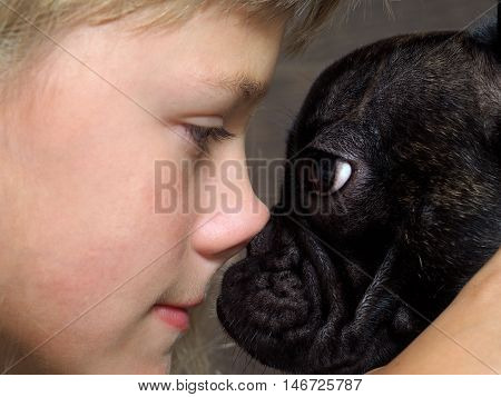 Dog and girl nose to nose. Tenderness love friendship. Sweet and loving picture of the child and dog friendly