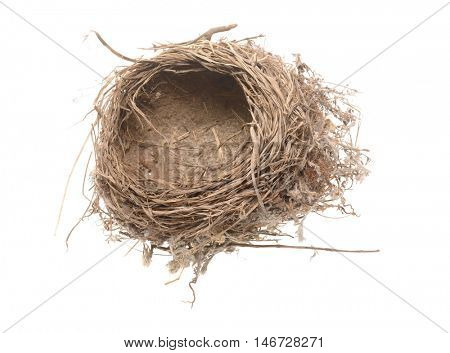 Close-up of a birds nest isolated on white. perhaps for birds nest soup?