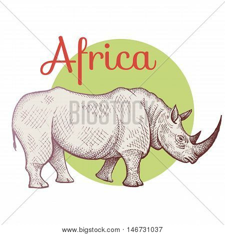 African animals. Rhino. Illustration Vector Art. Style Vintage engraving. Hand drawing.