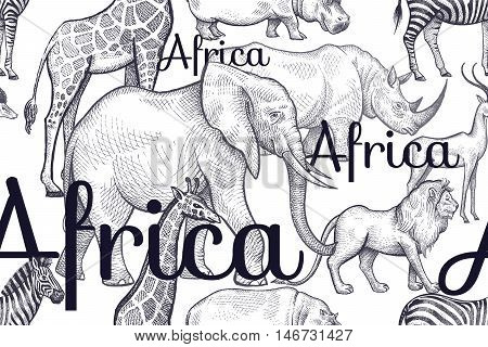 Vector seamless pattern African animals and inscriptions. Hand drawing black elephants rhinos giraffes zebras hippos lions antelopes on white background. Designs for fabrics textiles paper.