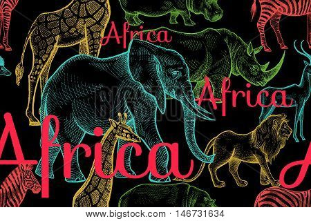 Vector seamless pattern African animals elephant rhino giraffe zebra hippo lion antelope inscriptions. Hand drawing color illustration on black background. Designs for fabrics textiles paper.