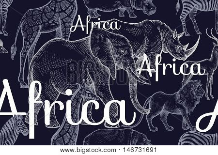 Vector seamless pattern African animals elephants, rhinos, giraffes, zebras, hippos, lion, antelope, inscriptions. Hand drawing white chalk on black background. Designs for fabrics, textiles, paper.