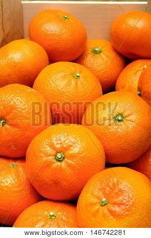 Close up of  Lot of orange mandarins pack